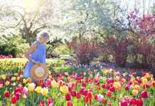 Best Gardeners in Melbourne