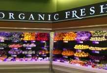 Best Health Food Stores in Brisbane
