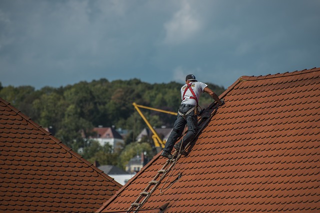 Best Roofing Contractors in Brisbane