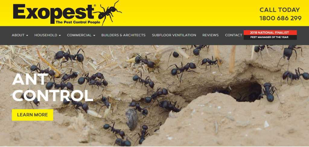 Best Pest Control Companies in Melbourne