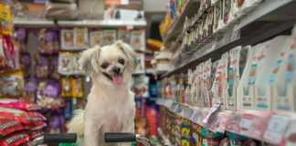 Best Pet Shops in Hobart