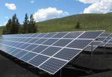 Best Solar Panel Suppliers in Hobart