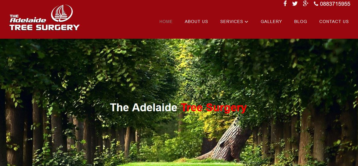 The Adelaide Tree Surgery