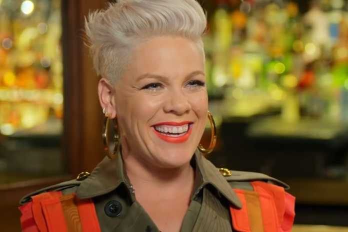 Pink defends her kids' controversial holocaust memorial photos