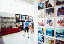 Best Art Galleries in Gold Coast