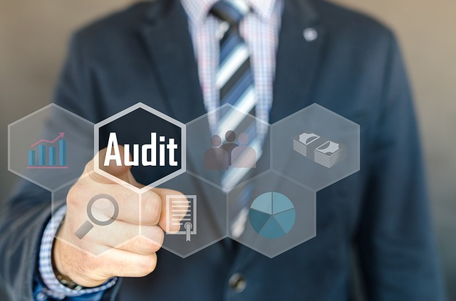 Best Auditors in Adelaide