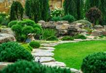 Best Landscaping Companies in Canberra