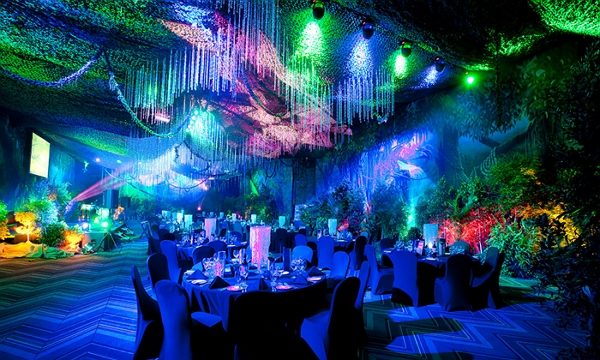 Dreamweavers Special Events Pty Ltd