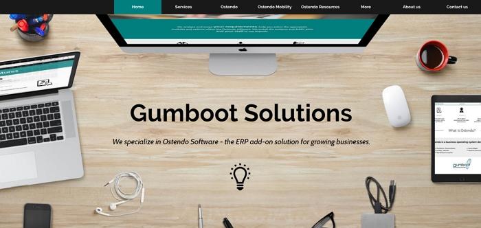 Gumboot Solutions