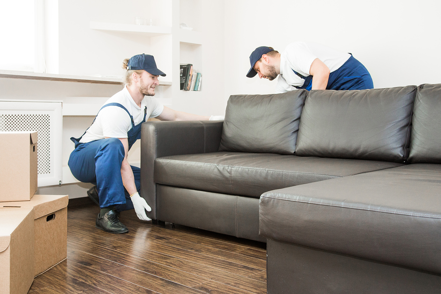 5 Best Removalists in Brisbane - Top Rated Removalists