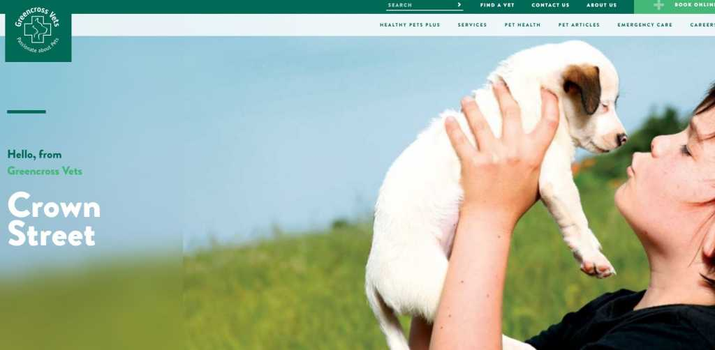 Best Veterinarians in Wollongong