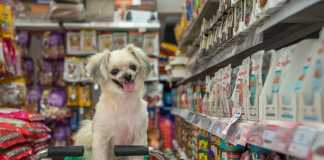 Best Pet Shops in Newcastle