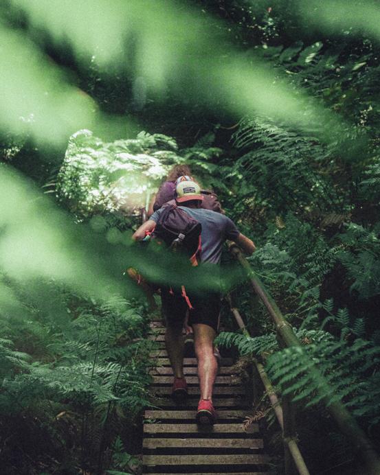 bush walking hiking