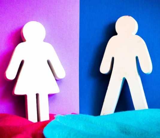 Gender-reveal explosion kills woman in Iowa