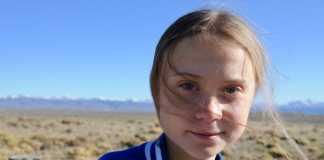 New beetle species named to honor Greta Thunberg
