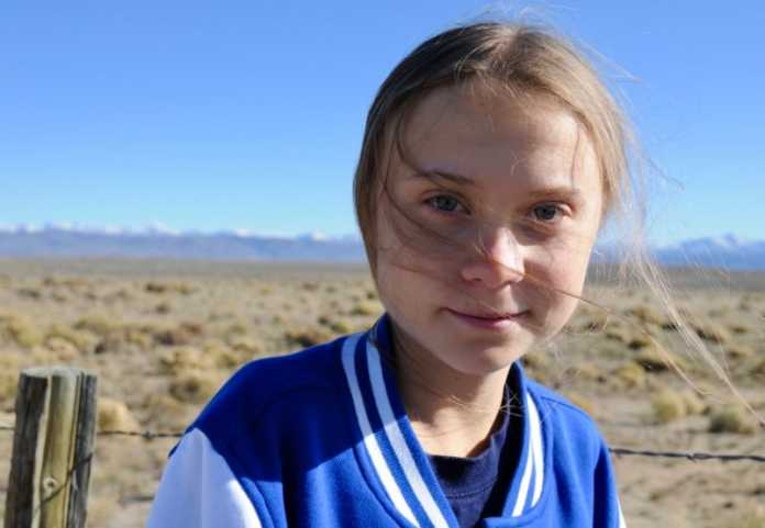 New beetle species named to honor Greta Thunberg