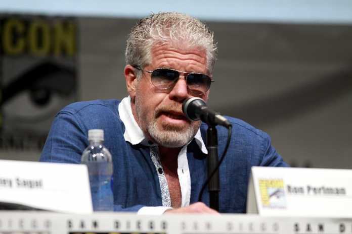 Ron Perlman Divorce