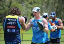 Everything you need to know about Gold Coast Titans