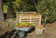 How to Dispose of Backyard Waste