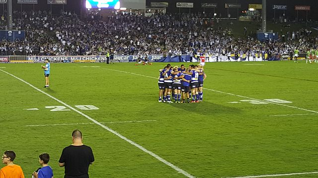 The Canterbury-Bankstown Bulldogs