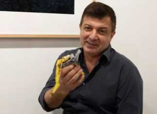 """Hungry"" artist eats banana art installation bought for $120,000"
