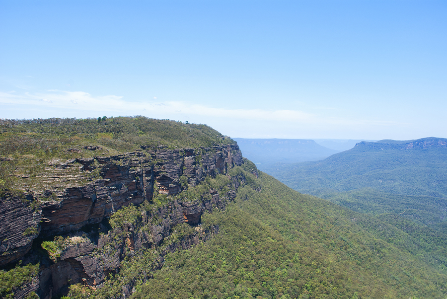 Cliff Top Blue Mountains