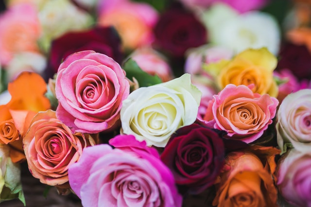 7 flower and gift ideas for your mother this mother's day roses