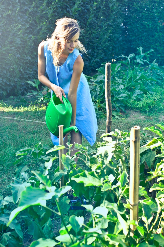 The best team building activities for foodies gardening