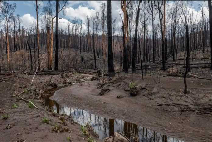 Natural disasters take a heavy toll on Australia's rivers