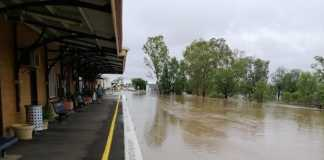 Australia: Torrential rains end major wildfire, leads to flooding