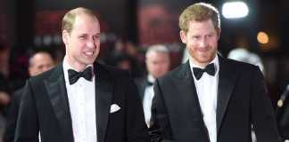 "Prince William and Prince Harry make an effort to ""talk more"""