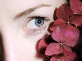 beautiful eyebrow of a woman