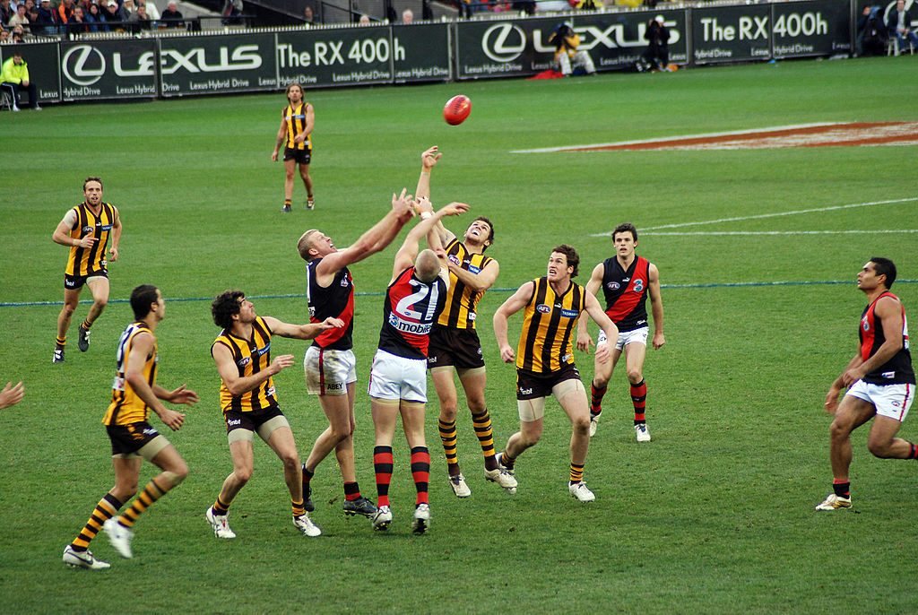 The Hawthorn Football Club