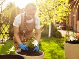 easy garden makeover tips to help sell your property