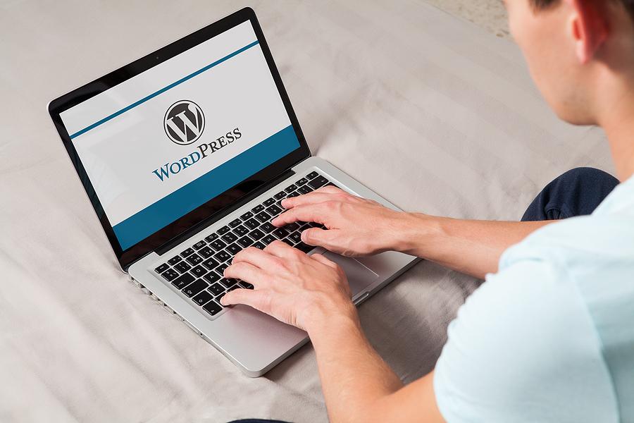 WordPress – an overview