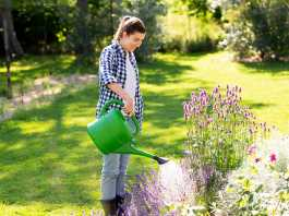 Garden makeover trends to embrace