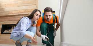 Summer pests and your rental property