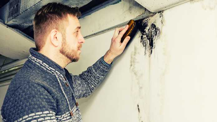 reasons why your wall is cracking