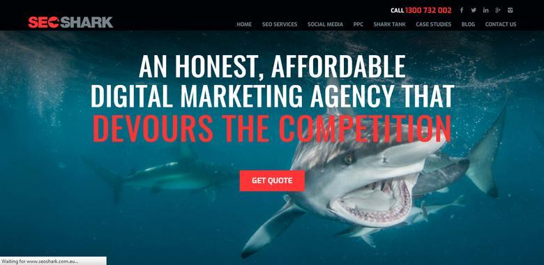 SEO Shark - best SEO company