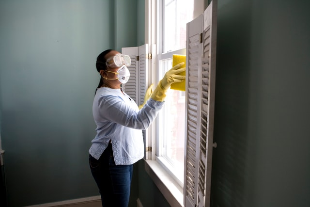 Top dangers of pests in your home