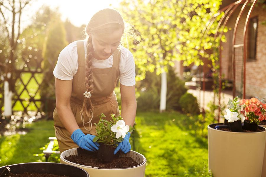designs for your garden
