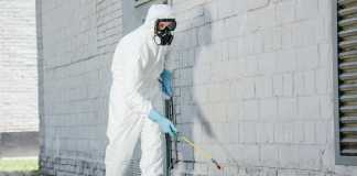 Signs of an expert pest control company