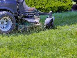 best lawn mowers in Australia
