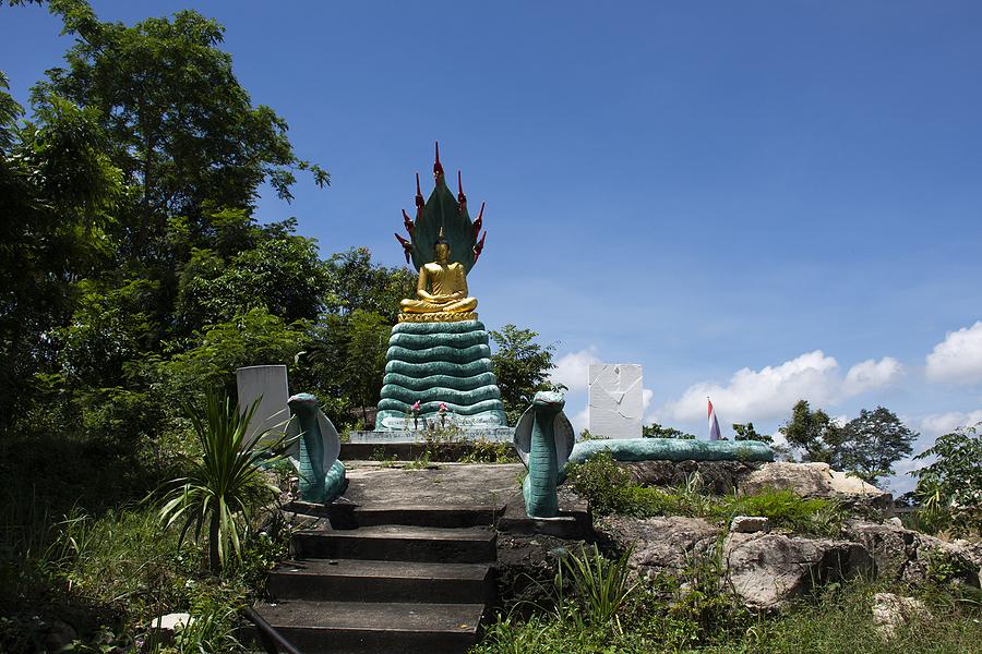 Buddha and the Nagas